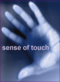 sense of touch - August 14, 2013d